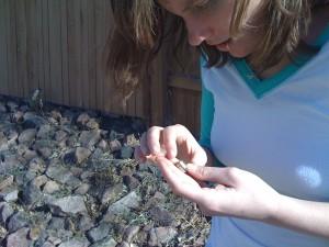 Kira inspecting a micro-geocache