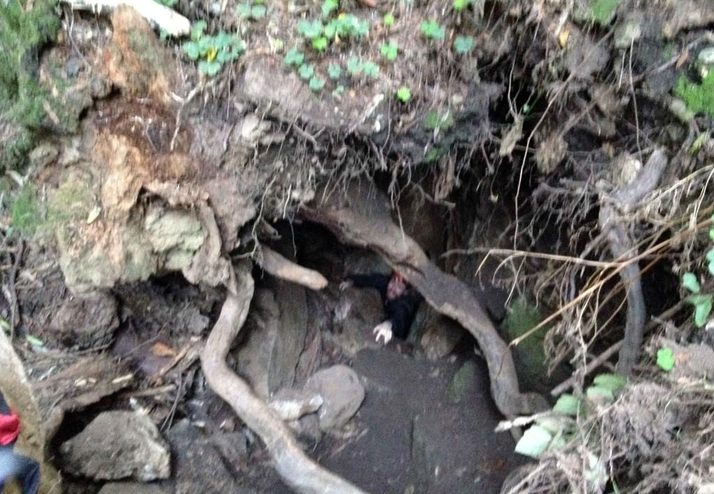2015 John in Hell Hole Cave Santa Cruz